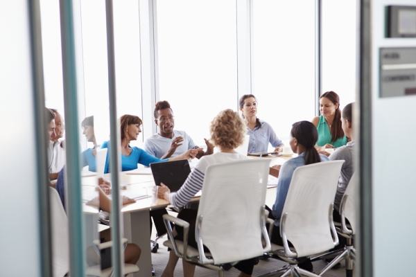 Group Behavior in Organizations